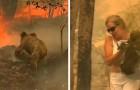 Australien: Diese Frau rast durch die Flammen, um einen Koala in Schwierigkeiten zu retten