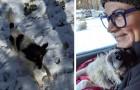Era stato abbandonato in catene tra la neve: quando vede arrivare i suoi soccorritori capisce di essere salvo