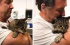 Este homem reencontrou o seu gato depois de 7 anos: ele pensava que o tivesse perdido para sempre