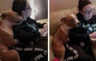 An abandoned pit bull cannot stop embracing the young woman who adopted him from an animal shelter