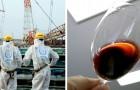 Dans les vins californiens on trouve de légères traces radioactives de Fukushima : une recherche le confirme