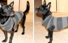 Il metodo semplice ed economico per trasformare un vecchio maglione in un caldo vestitino per il vostro cane
