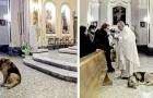 Deze hond gaat elke dag naar de mis in de kerk waar de begrafenis van zijn baasje plaatsvond, misschien in de hoop haar weer te zien