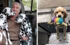 UPS-koeriers publiceren foto's van de honden die ze tijdens bezorgingen tegenkomen op deze Facebook-pagina