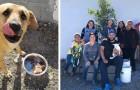 Un grupo de mujeres ha creado una posada para perros callejeros, ofreciéndoles comida y refugio