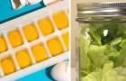 10 pratici trucchi per mantenere i cibi in frigo sempre freschi