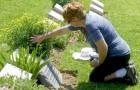 Conversar com os entes queridos que se foram pode ajudar a elaborar o luto e melhorar a saúde mental