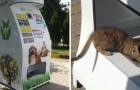 Diese genialen Spender liefern Wasser und Futter für streunende Tiere im Austausch gegen Plastikflaschen