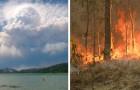 Die Brände in Australien sind so massiv geworden, dass sie begonnen haben, ein eigenes