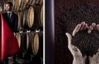 Una nuova pelle vegetale ricavata dalle bucce e dai semi dell'uva arriva per rivoluzionare il mondo della moda