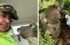 Tijdens de tragische branden in Australië heeft een man een kleine koala gered die wanhopig naar een schuilplaats zocht