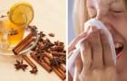 Tisane de curcuma et de cannelle : un remède naturel contre les maux de saison