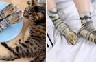 De sokken die de poten van onze favoriete dieren reproduceren, komen op de markt