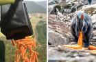 Australië: helikopters laten tonnen wortelen en aardappelen vallen voor hongerige dieren die aan het vuur zijn ontsnapt