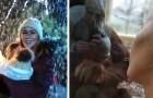 Een vrouwtjes orang-oetan benaderde een vrouw die haar zoon borstvoeding gaf, en zich in haar herkende