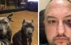 Este homem adotou duas pitbulls do canil: elas retribuíram salvando sua vida durante um assalto