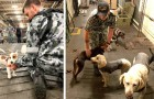 A Marinha australiana hospedou em um navio mais de 100 animais domésticos que escaparam do fogo