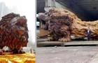 Un ragazzo e i suoi 20 assistenti hanno intagliato un gigantesco leone da un unico albero di sequoia
