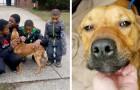 Estas 4 crianças salvaram um cão que tinha sido amarrado e abandonado na frente de uma casa abandonada