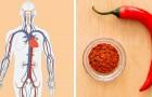 Il consumo di questi 5 alimenti può contribuire al miglioramento della circolazione sanguigna