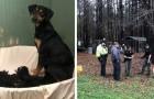 Mamma cane conduce i volontari di un rifugio in una casa dove sono rinchiusi e maltrattati altri animali