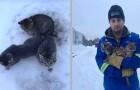 Cet homme a sauvé 3 chatons coincés dans la glace, abandonnés sur le bord de la route
