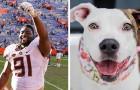 Questo campione di football celebra la vittoria al Super Bowl pagando le tasse di adozione per i cani di un rifugio
