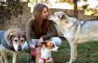 This young woman only adopts older dogs from kennels, giving them affection and warmth in their last period of life