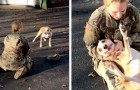 She returns home after 8 months of military training and at first, her dog seems to no longer recognize her