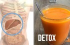 6 boissons qui peuvent aider à garder le foie en bonne santé