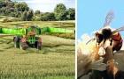 La Toscana vieterà il glifosato dal 2021: un regalo importante all'ambiente e alla salute delle persone