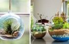 10 trovate strabilianti per creare terrari fai-da-te e dar vita a piccoli mondi verdi in qualsiasi contenitore di vetro