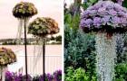 Diese Kompositionen verwandeln Ihre Sukkulenten in farbenfrohe
