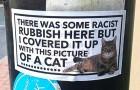A Manchester delle persone hanno coperto scritte e graffiti razzisti con adesivi che mostrano un tenero gattino