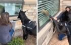 Un cane da terapia visita gli anziani in isolamento di una casa di riposo per dare loro un po' di conforto