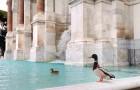 Roma è deserta e silenziosa: le anatre si godono un bagno nel maestoso fontanone del Gianicolo