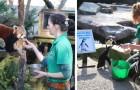 Sommige werknemers besluiten om de isolatie door te brengen in de dierentuin waar ze werken, om de dieren niet alleen te laten
