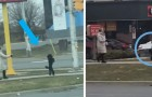 Crede di aver visto un umano travestito da cane, ma in realtà è un barboncino nero che cammina su due zampe