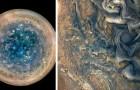 Les photos spectaculaires de Jupiter prises par la NASA : des tempêtes et des cyclones hypnotiques traversent la surface de la planète géante gazeuse