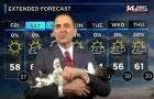 Il meteorologo fa le previsioni da casa in quarantena: la sua gattina entra in campo e gli ruba la scena