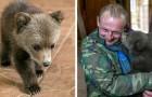 Un fermier adopte un ourson orphelin : il était allé jusqu'à son village à la recherche de nourriture