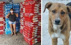 Uma empresa doa mais de 15 toneladas de alimentos para os cães de rua que estão em perigo durante esta pandemia