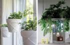 13 Ideen für die Dekoration des Hauses mit Pflanzen, die von der Decke hängen