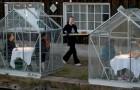 Coronavirus : un restaurant construit de petites serres pour accueillir ses clients tout en respectant la distanciation physique