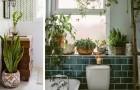 13 idee da cui trarre ispirazione per arredare il bagno con bellissime piante