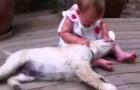 Tem gente que prefere manter os cães longe das crianças, e eu me pergunto: por que?