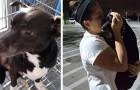 Dopo 6 lunghi anni una donna riesce a riabbracciare il suo cane: credeva di averlo perso per sempre