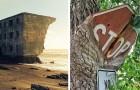 12 fois où la nature a prévalu et ne s'est pas laissée