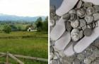 Un fermier trouve accidentellement un trésor ancien dans ses champs : 1 753 pièces romaines