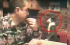 This man is deaf, but look how he communicates with his cat. Extraordinary!